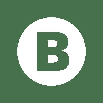 brukerforum_B_logo_white_trans